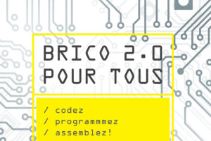 Un livre Do it yourself (DIY) : Brico 2.0 pour tous